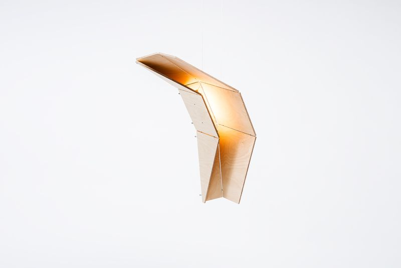 Eagle wood light collection