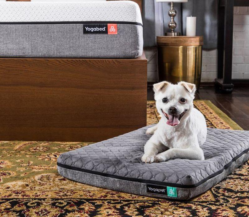 yogabed-yogapet-dog-mattress