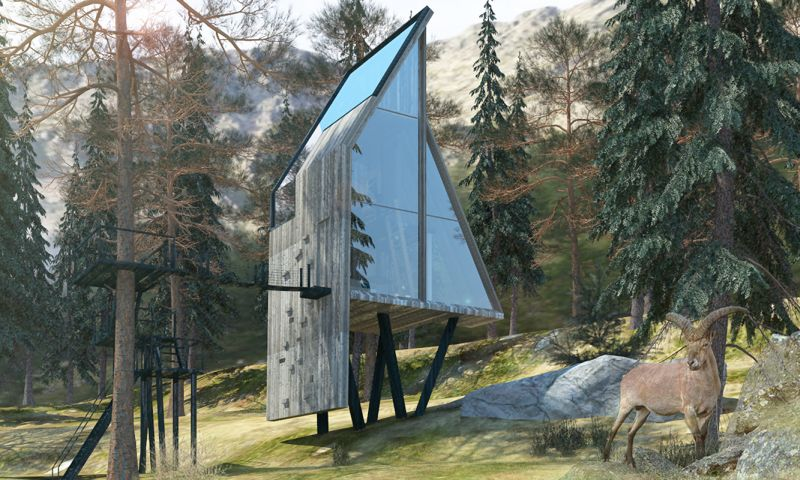 Treehouse with climb wall and glass facade