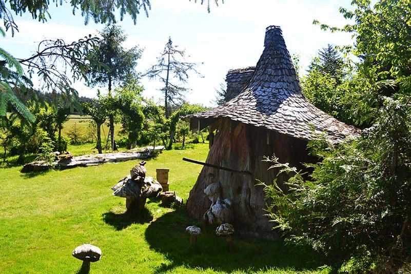 Real-life hobbit house built out of a single tree trunk