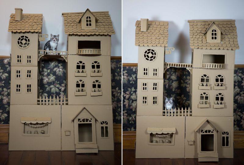 cat palace