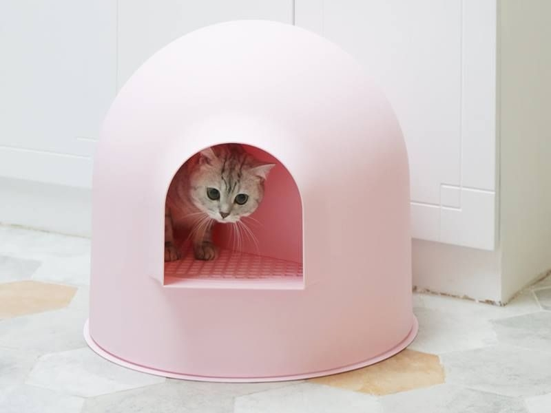 Award-winning Igloo cat litter box by Pidan studio