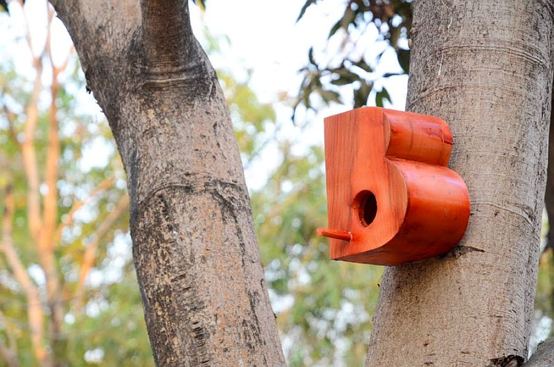 Alphabetic birdhouse by Artist Nishant Jethi