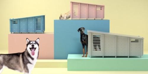 Barkitecture's waterproof flat-pack dog home