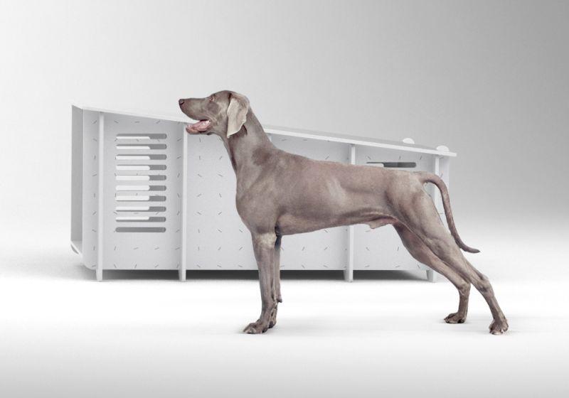 amazing contemporary-styled dog house