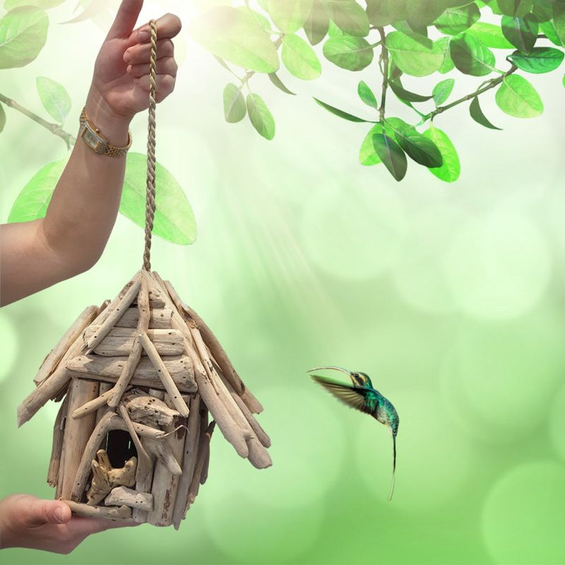 best Birdhouse designs