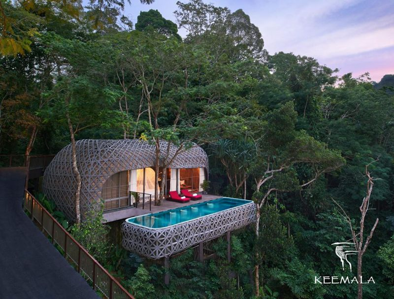 25 Best Treehouse Hotels From Around The World