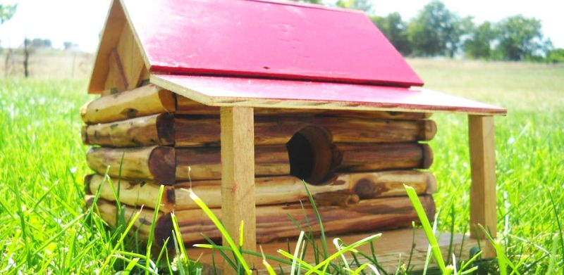 Log Cabin Bird House by machoturtle
