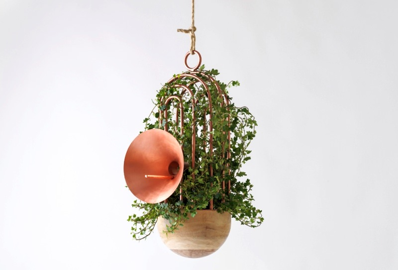 Orator Birdhouse by Katia Tolstykh