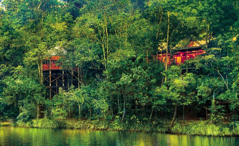 Silky Oaks Lodge River Treehouse- Australia