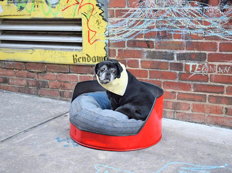 Dog bed recycled from a 50 gallon oil drum