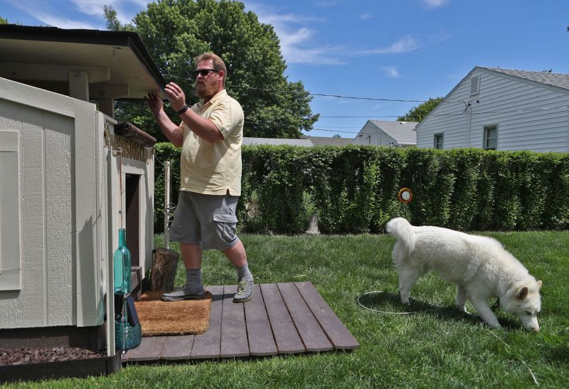 Deluxe Doghouse by David Tanner