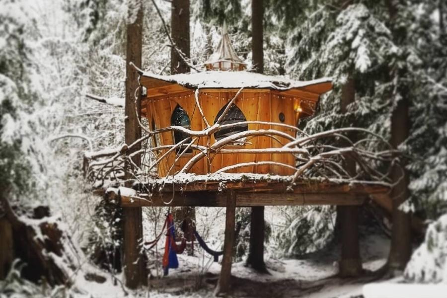 Pot-Leaf Treehouse in Monroe