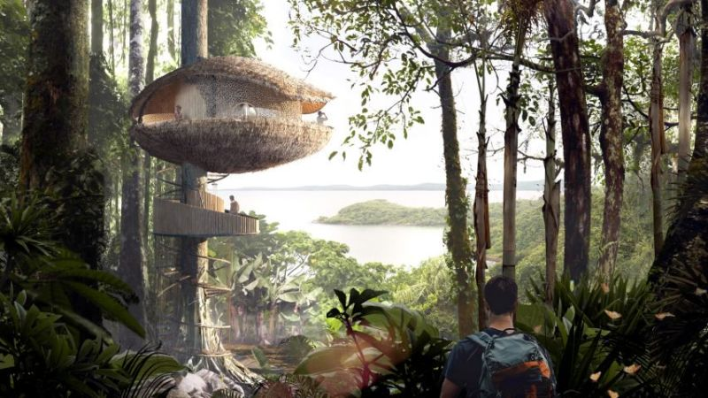 Baca Architects' cocoa pod-shaped treehouses for an eco-hotel in Panama island