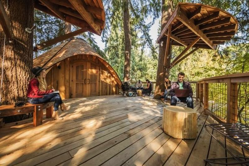 Microsoft Treehouse Workspaces