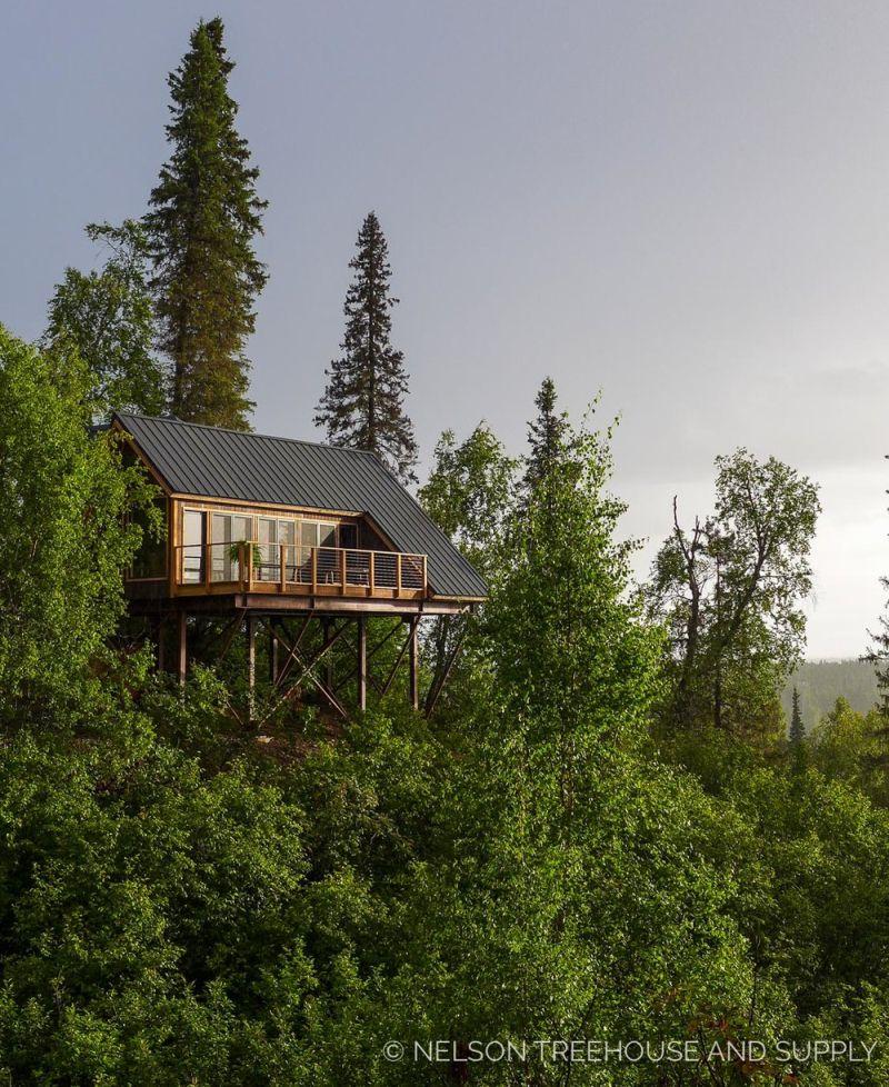 Princess Cruises' Alaskan treehouse offers awesome views of Denali