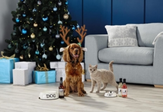 Aldi's pet beer for your party animal