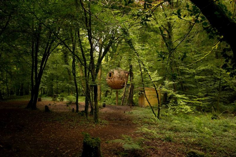 Lost Meadow Treepod You can rent this hanging treehouse pod for $128 per night