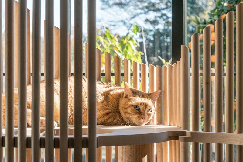 sculptural Neko cat tree