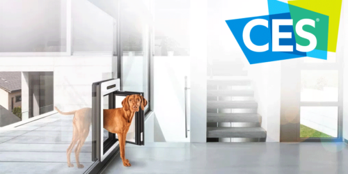 Hottest pet care products from CES 2018