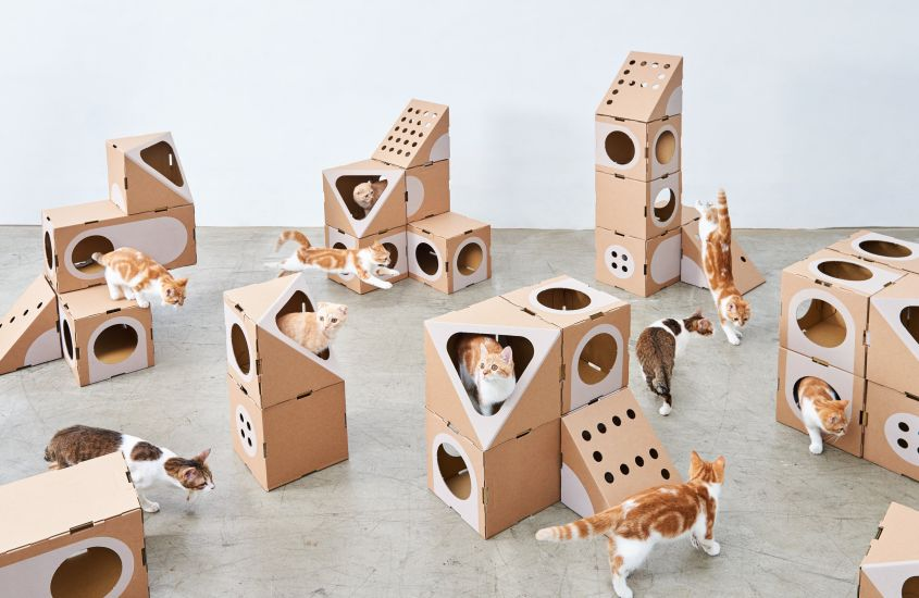 Modular Cat house Cat furniture