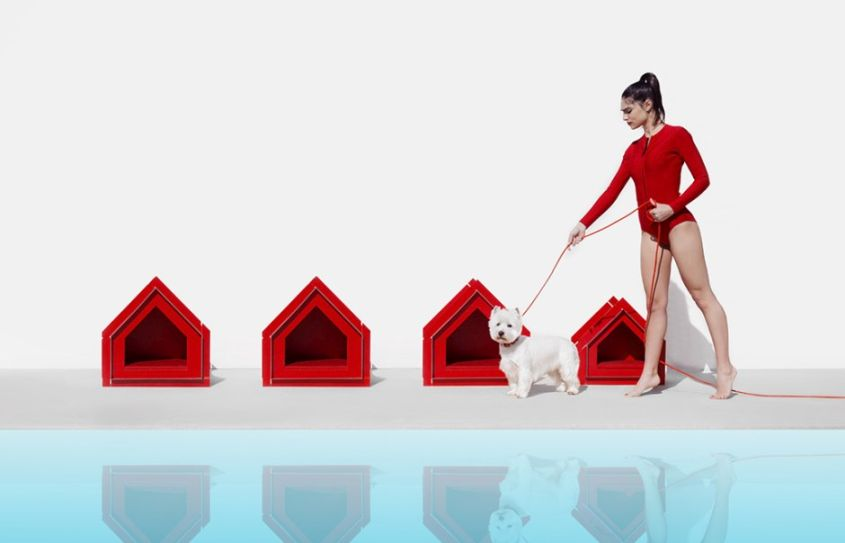 Easy-to-Assemble Touffu Pet House from Diabla Uses no Glue and Nails