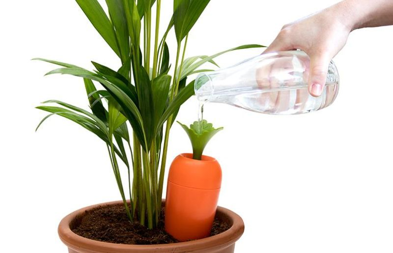 Peleg Design's Carrot-Shaped Self-Watering Container