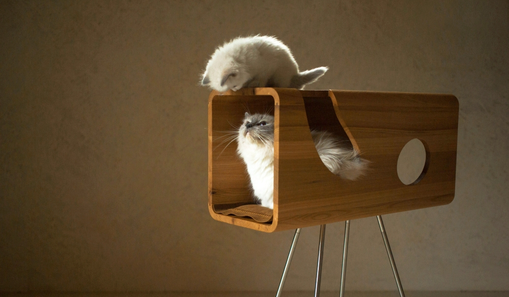 Cat60 Wood Cat Bed by Brando Design