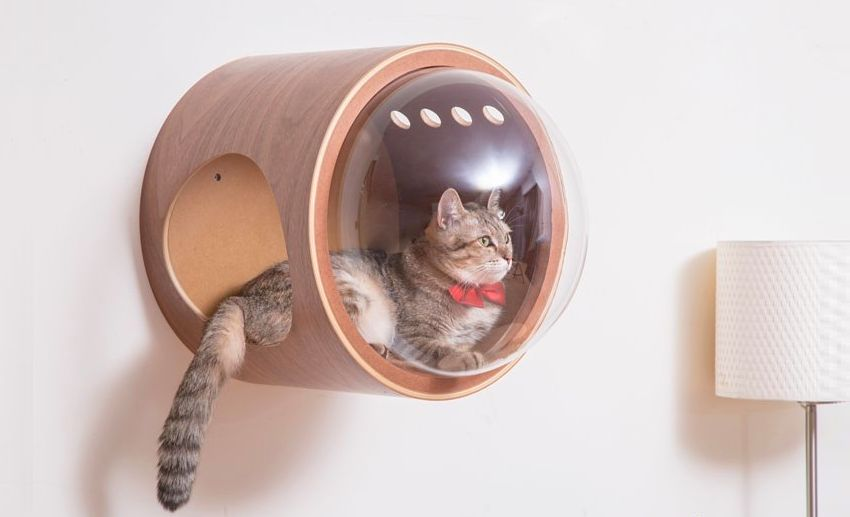 Myzoo Studio Spaceship-Inspired Cat Beds - Pet Furniture