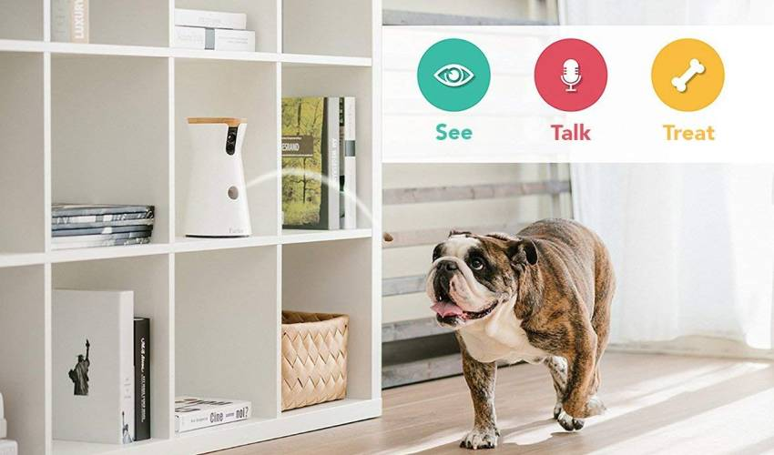 Furbo Full HD Wi-Fi Dog Camera