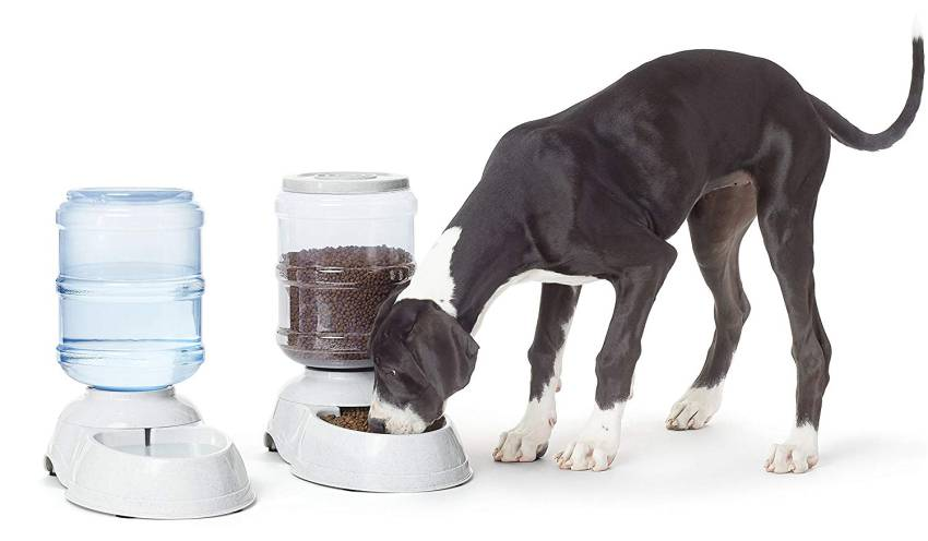 Gravity Pet Feeder and Waterer