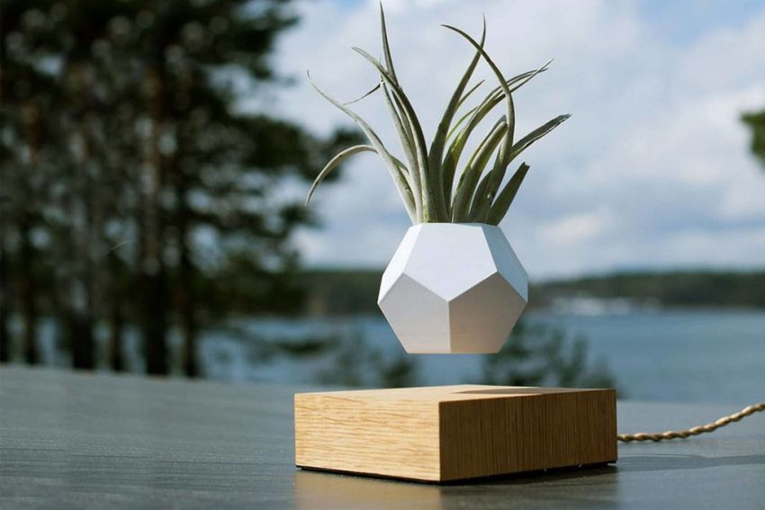 DIY Levitating Planter You'll Want at Your Coffee Table