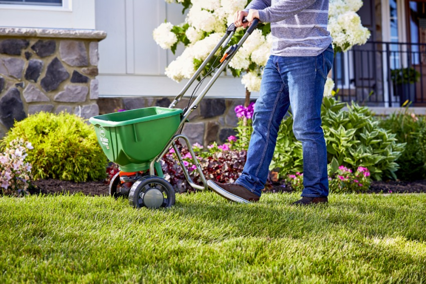 How to Take Care of Your Lawn in Spring Season