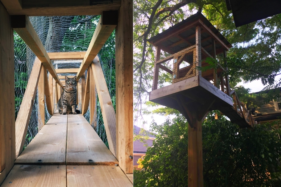 Catio Outdoor Cat Treehouse - DIY