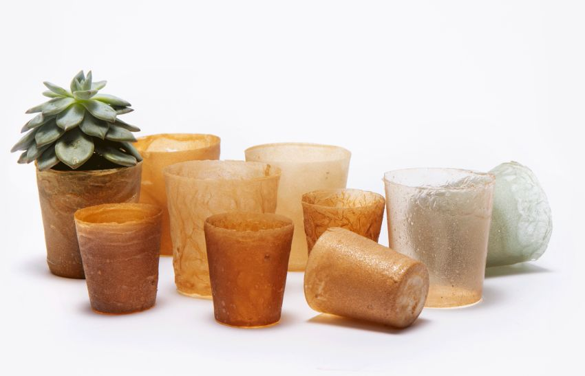 Designers Transform Seafood Waste into Sustainable Bioplastic