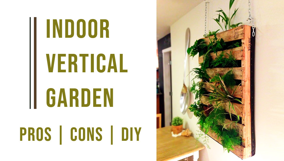 indoor vertical garden - Pros-Cons-DIY