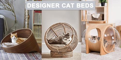 Designer-Cat-Beds-to-Buy
