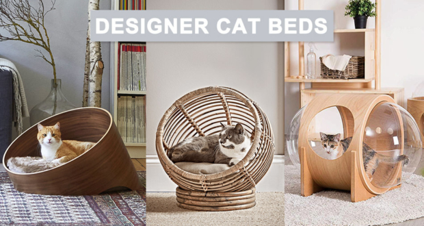Designer-Cat-Beds-to-Buy