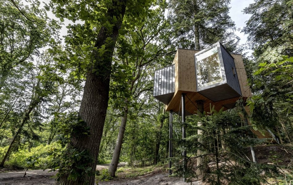 Løvtag Treetop Cabins Near Mariager Fjord in Denmark
