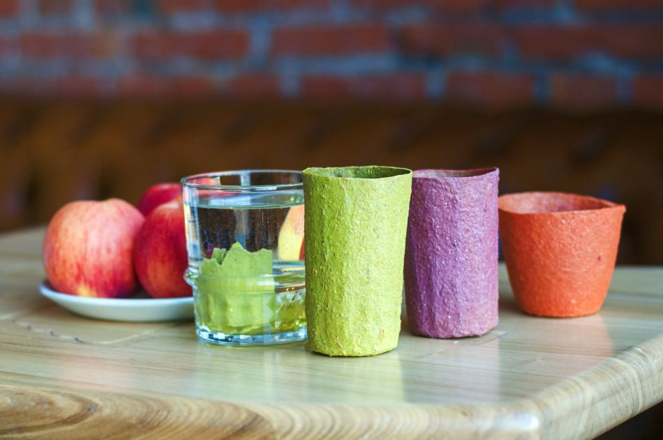 Scientists have Developed Disposable Edible Dishes from Apple