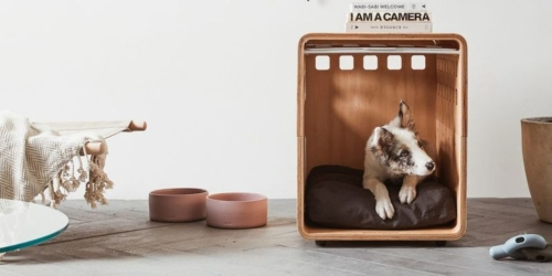 Stylish Dog Crate from Fable for Your Pooch