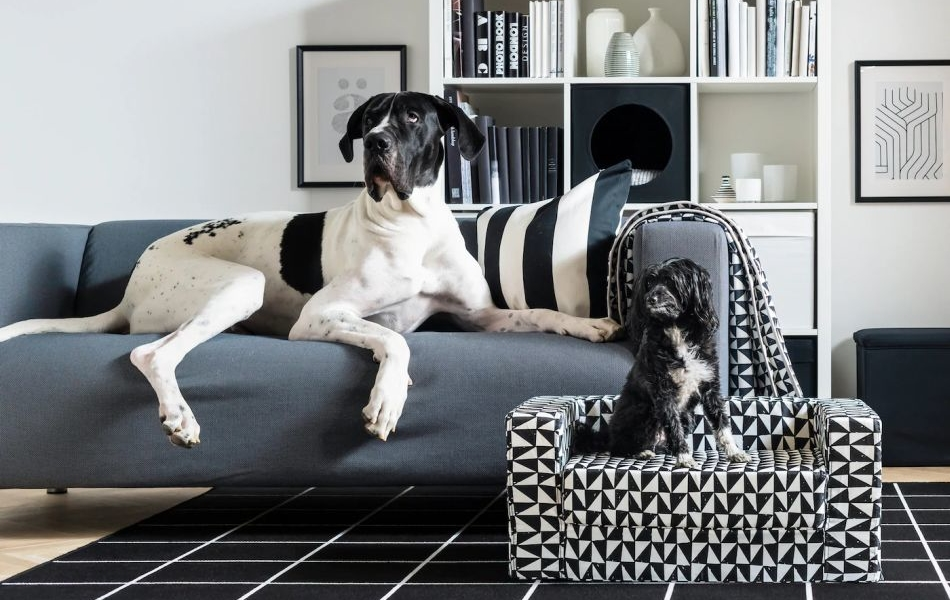 IKEA LURVIG Pet Collection 2019
