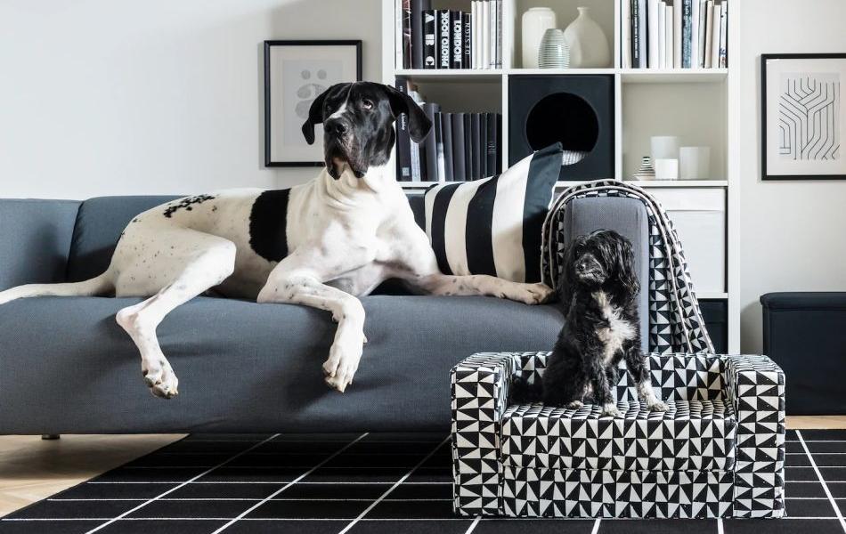 IKEA LURVIG Pet Collection 2019