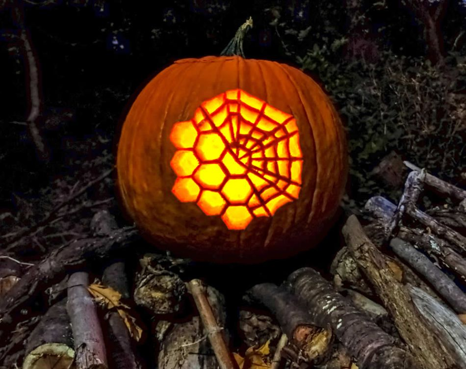 NASA Reveals Tricks for James Webb Space Telescope Pumpkin Carving