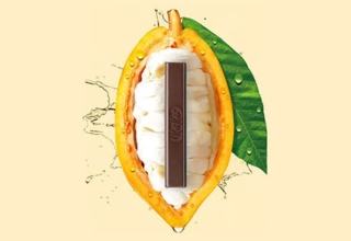NestléCreates First Ever Chocolate Entirely Made from Cacao Fruit