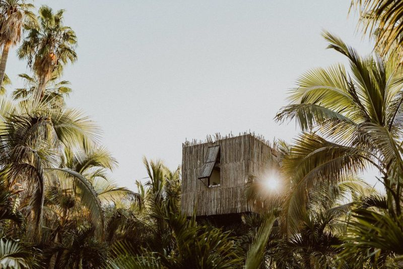 Best treehouse hotels in the world
