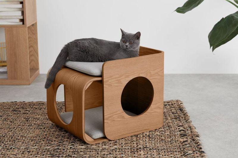 best designer cat beds