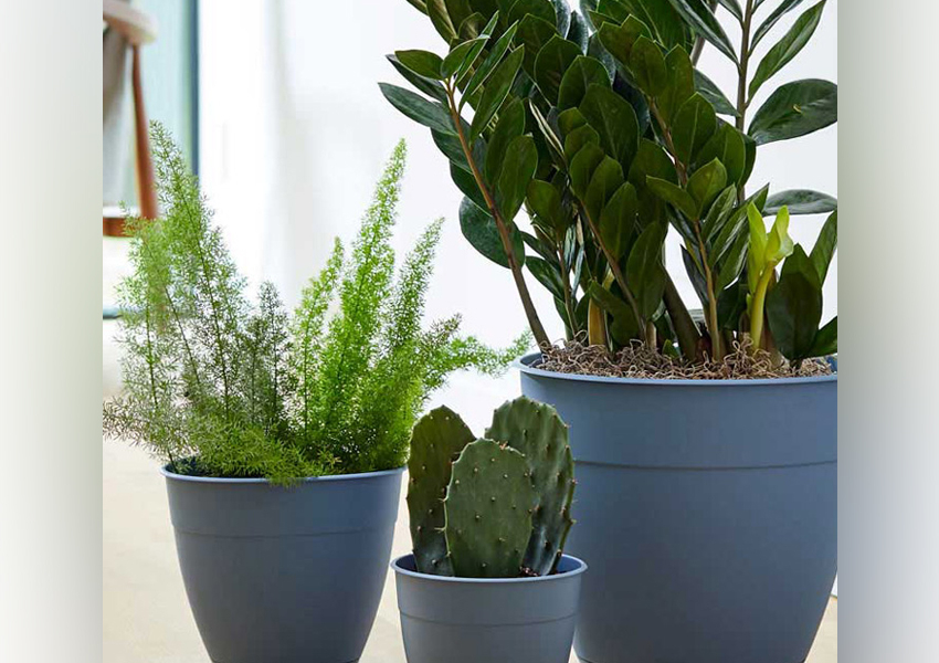 Bloem and Lowe's are Making Planters out of Ocean Plastic
