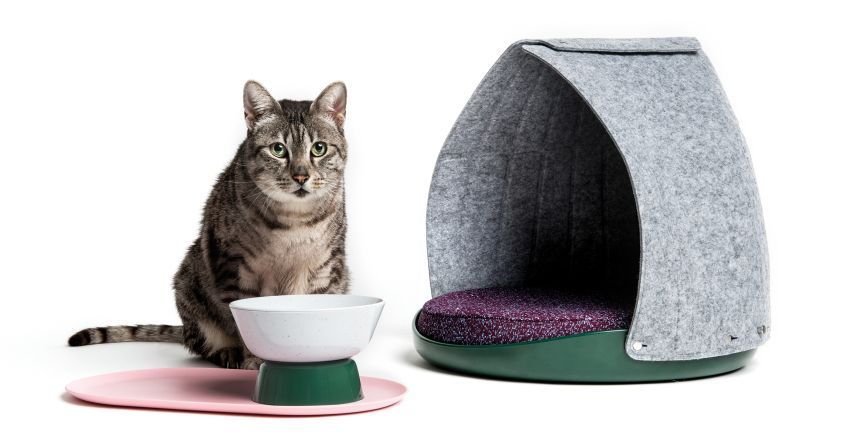 LAYER Designs Cat-Friendly Furniture on Feline Behavior