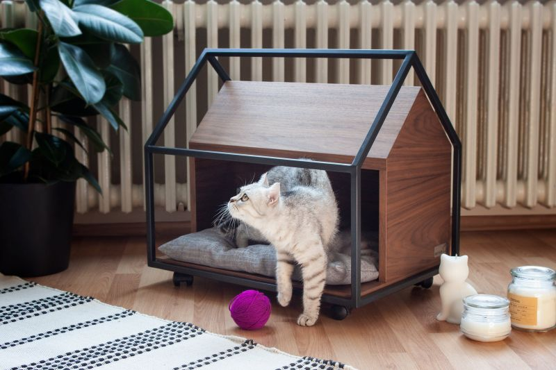 PET-TURE CAGE Pet Bed Embraces Feeling of Real Home